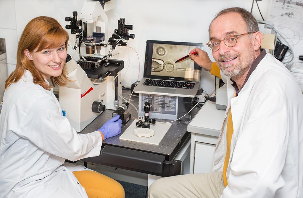Wichtiger Erfolg in der Stammzellforschung+ + + mehr: