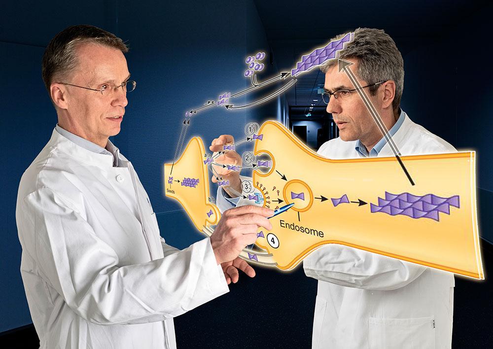 Patientenkolloquium zum Thema Parkinson: Welche Therapie für welchen Patienten?