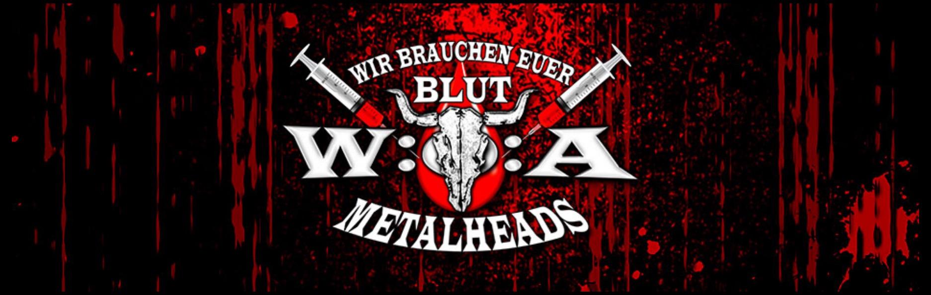 """Bonner Blutspende-Fledermaus """"Cory"""" trifft Heavy Metal"""
